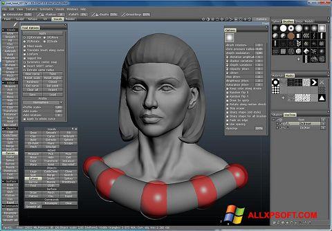 スクリーンショット 3D-Coat Windows XP版
