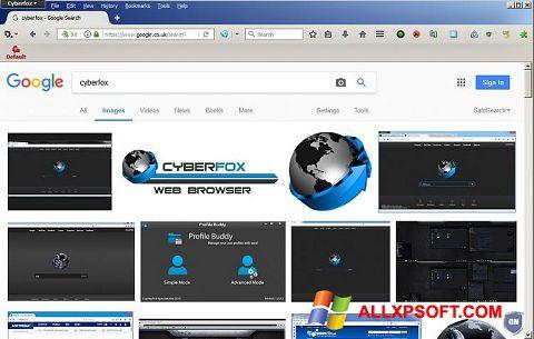 スクリーンショット Cyberfox Windows XP版