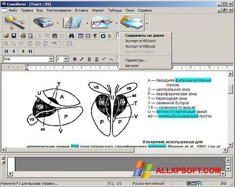 スクリーンショット CuneiForm Windows XP版