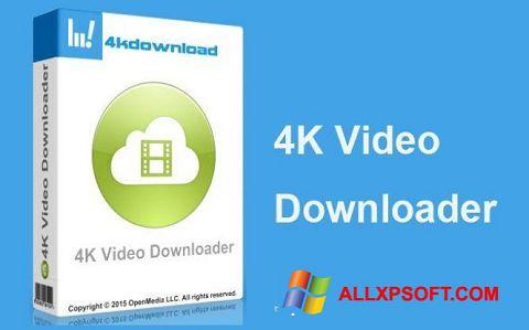 スクリーンショット 4K Video Downloader Windows XP版