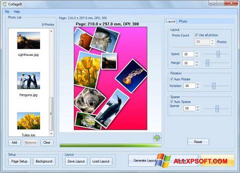 スクリーンショット CollageIt Windows XP版