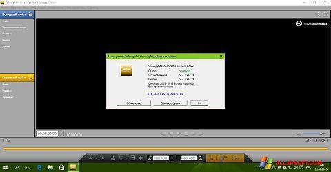 スクリーンショット SolveigMM Video Splitter Windows XP版