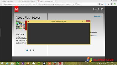 スクリーンショット Adobe Flash Player Windows XP版