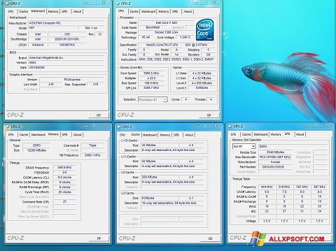 スクリーンショット CPU-Z Windows XP版