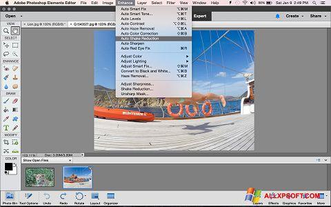 スクリーンショット Photoshop Elements Windows XP版